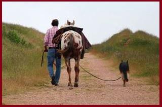 Uomo cavallo e cane